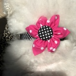Sassy Black Dot Dog Pet Collar