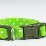 Hot Lime Dot Dog Pet Collar