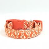 Mod Damask Dog Pet Collar