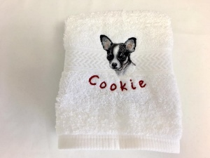 Sassy Dog Fashions - Best pet store selling pet clothes and accessories in USA