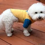 SASSY PAW Dog Bone Ball Jersey