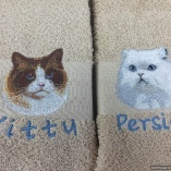 Personalized Exotic Cat Breed Hand Towels