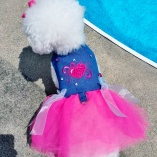 Bella & Friends Couture Denim Pink Tutu Dress for Luxury Pets