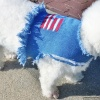 Totally Distressed Patriotic Stars n' Stripes Holiday Flag Denim Vest Jacket for Pet Dogs