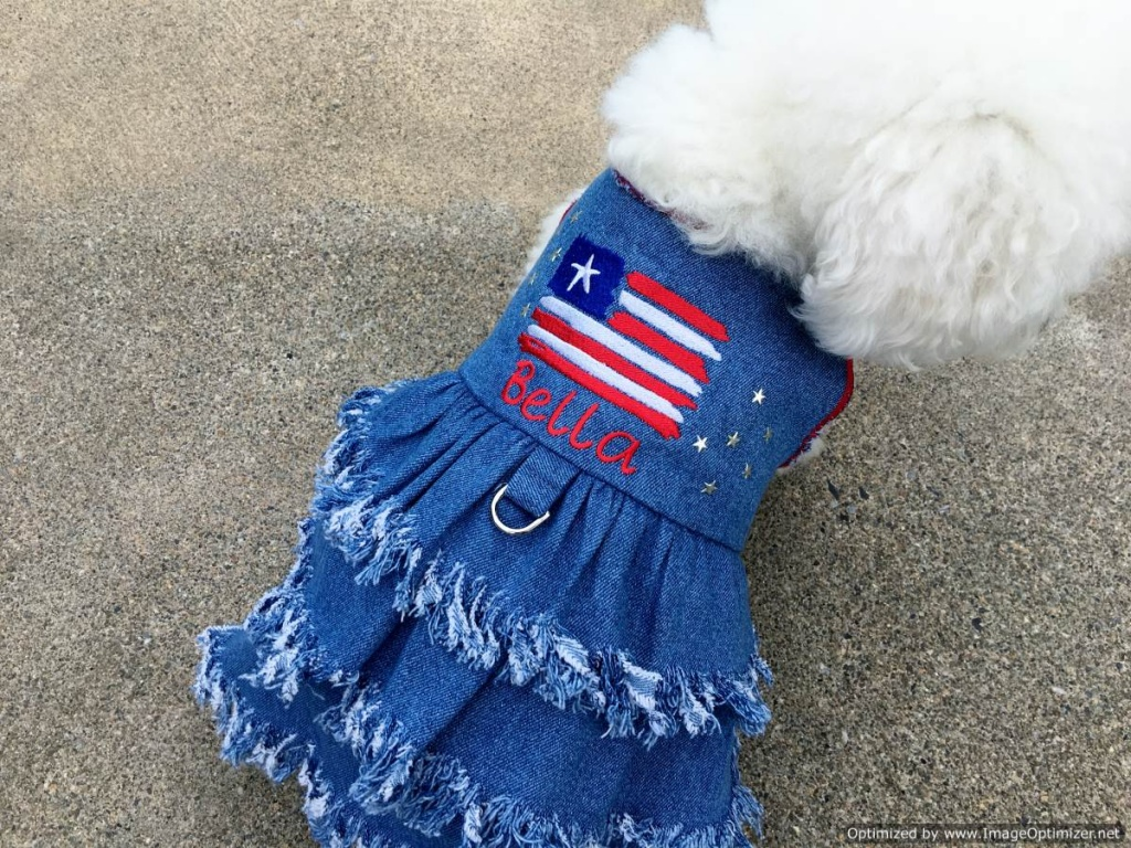 Fringe Denim Dress for Pet Dogs