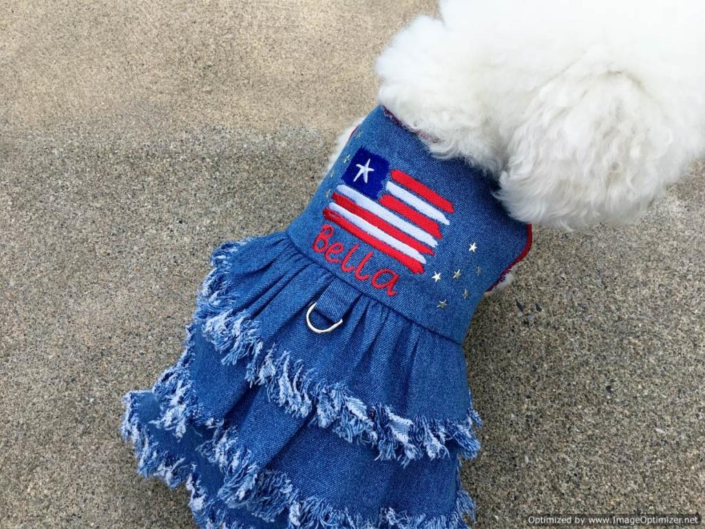 Fringe Denim Dress for Pet Dogs