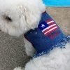 Patriotic Stars n' Stripes Fringe Denim Vest Jacket for Pets