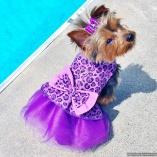 Bella & Friends Purple Diva Tutu Dress for Little to Medium Dogs