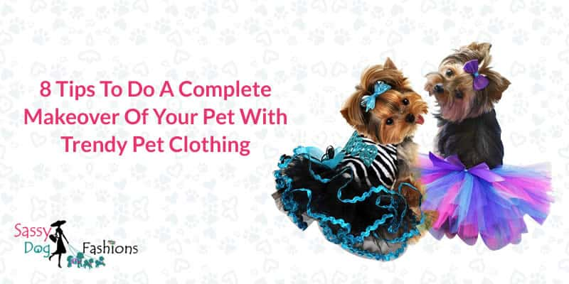 8 Tips To Do A Complete Makeover Of Your Pet With Trendy Pet Clothing