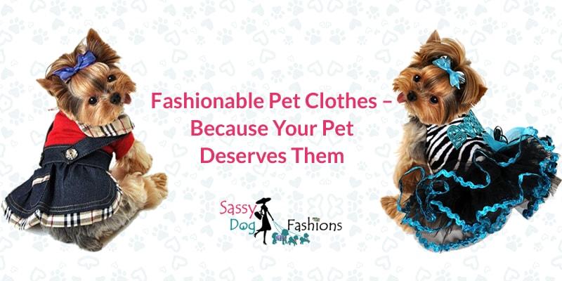 Fashionable Pet Clothes – Because Your Pet Deserves Them