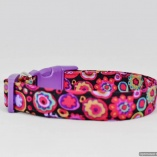 Paperweight Gypsy Designer Dog Pet Collar