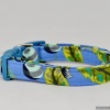 Tula Pink Blue Bird Designer Dog Pet Collar