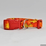 Autumn Surprise Dog Pet Collar