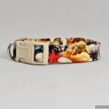 Sea Shell Theme Dog Pet Collar