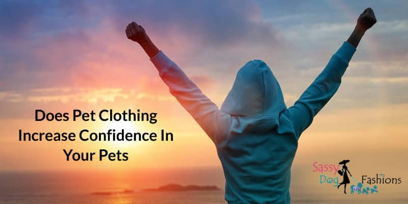 Does Pet Clothing Increase Confidence In Your Pets?