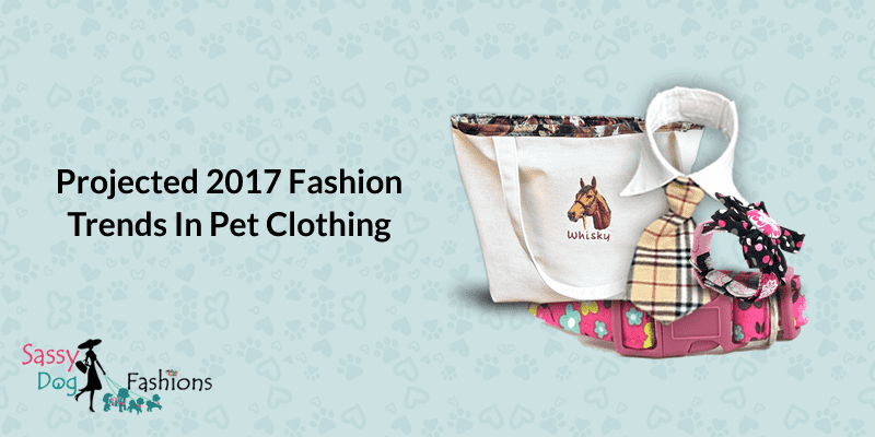 Projected 2017 fashion trends in pet clothing
