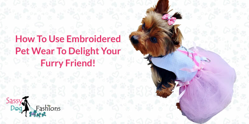 How to Use Embroidered Pet Wear to Delight Your Furry Friend!