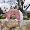 Sassy Dog Sleeper Dog Pajamas Jumper in Purple and Lime