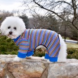Sassy Dog Sleeper Dog Pajamas Jumper in Multi Color Stripes