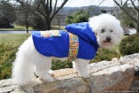 NATURE DOG Raincoat Waterproof OUTERWEAR for Dogs in Royal Blue with Multi-color Links