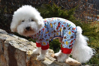 Sassy Dog Sleeper Dog Pajama Jumper PJ in Dog Park theme