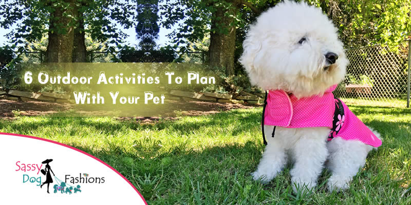 6 outdoor activities to plan with your pet!