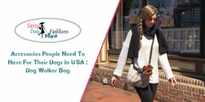 Accessories people need to have for their dogs in USA Dog Walker Bag