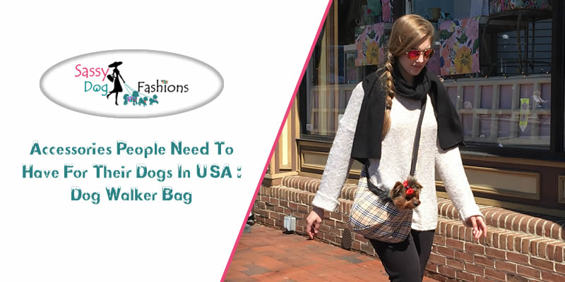 Accessories people need to have for their dogs in USA   Dog Walker Bag!