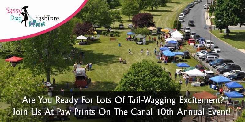 Are You Ready For Lots Of Tail-Wagging Excitement? Join Us At Paw Prints On The Canal 10th Annual Event!