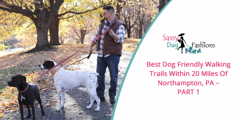 Best Dog Friendly Walking Trails within 20 miles of Northampton, PA – PART 1