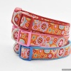 Bright and Colorful Designer Kaffe Fassett DOG COLLARS in Large Sizes – Orange Paperweight
