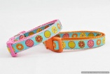Stunning French Designer DOG COLLARS in S, M, L, XL  – Euro Circles on Turquoise