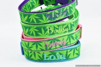 POT LEAF DOG COLLARS