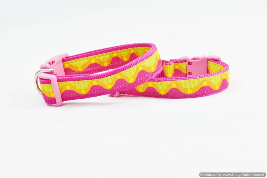 Bright DOG COLLAR