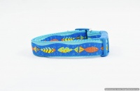 Designer Big Dog Collar
