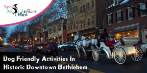 Dog Friendly Activities in Historic Downtown Bethlehem