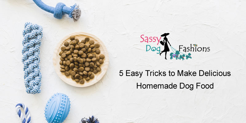 5 Easy Tricks to Make Delicious Homemade Dog Food