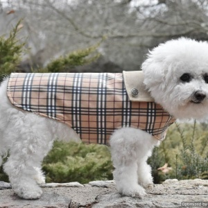 dog waterproof raincoat