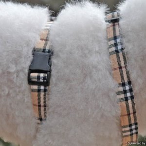 Furberry Adjustable Dog Harness