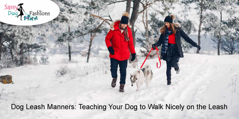 Dog Leash Manners: Teaching Your Dog to Walk Nicely on the Leash