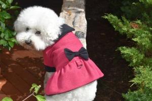 Sassy Dog Fuchsia Boucle Cold Weather Designer Dress Dog COAT