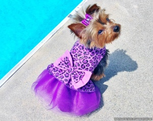 Bella & Friends Purple Diva Tutu Dress