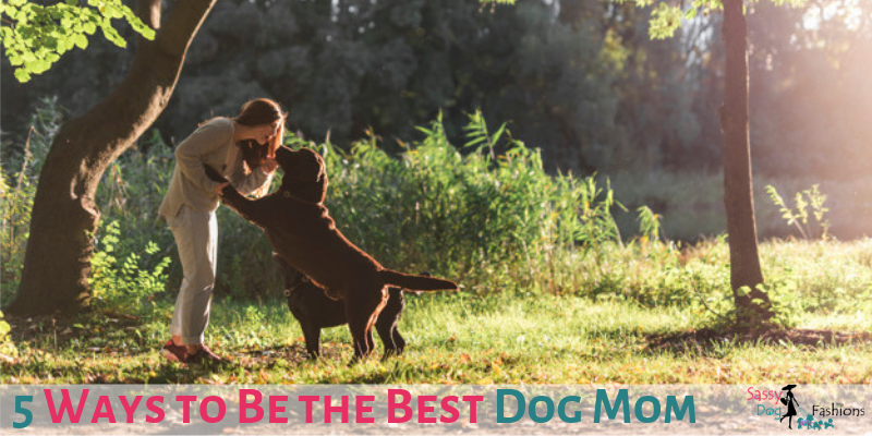 5 Ways to Be the Best Dog Mom