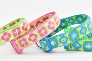 Colorful accessories for Dogs-SassyDogFashions