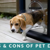 Pros & Cons Of Pet Door