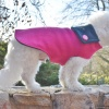 Fuschia Pink Wool Blend Female Dog Coat Designer Fashion for Warmth in All Sizes Small to Large