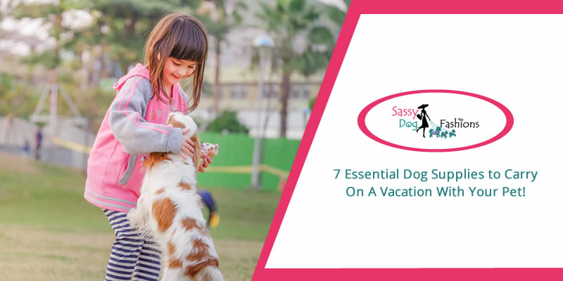 7 Essential Dog Supplies to Carry On a Vacation with Your Pet!