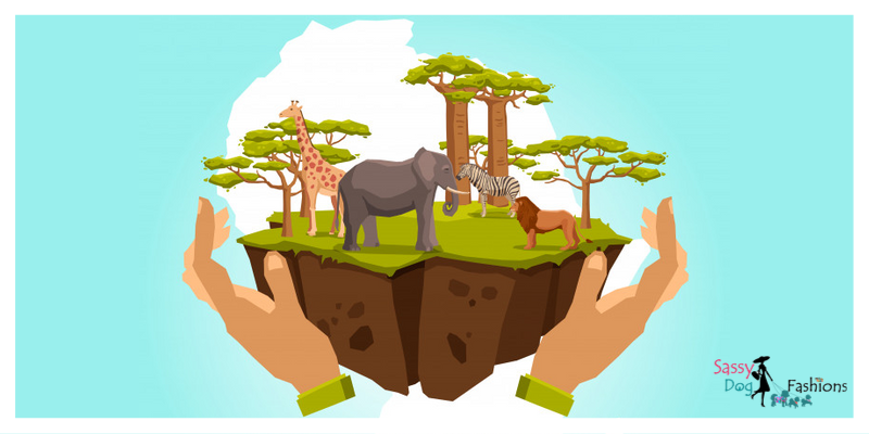 October 4–Ideas to Celebrate World Animal Day