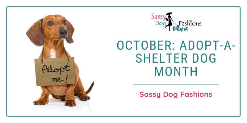 October: Adopt-A-Shelter Dog Month
