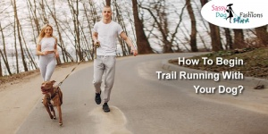 How to Begin Trail Running with Your Dog